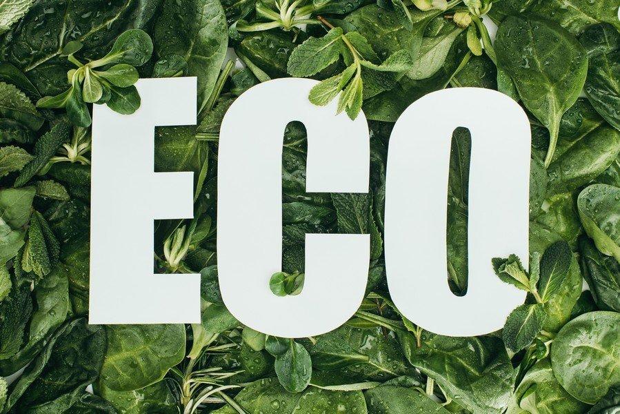 Eco-Chem Biz: Cash in on the Billion Dollar Demand for Green Chemicals!
